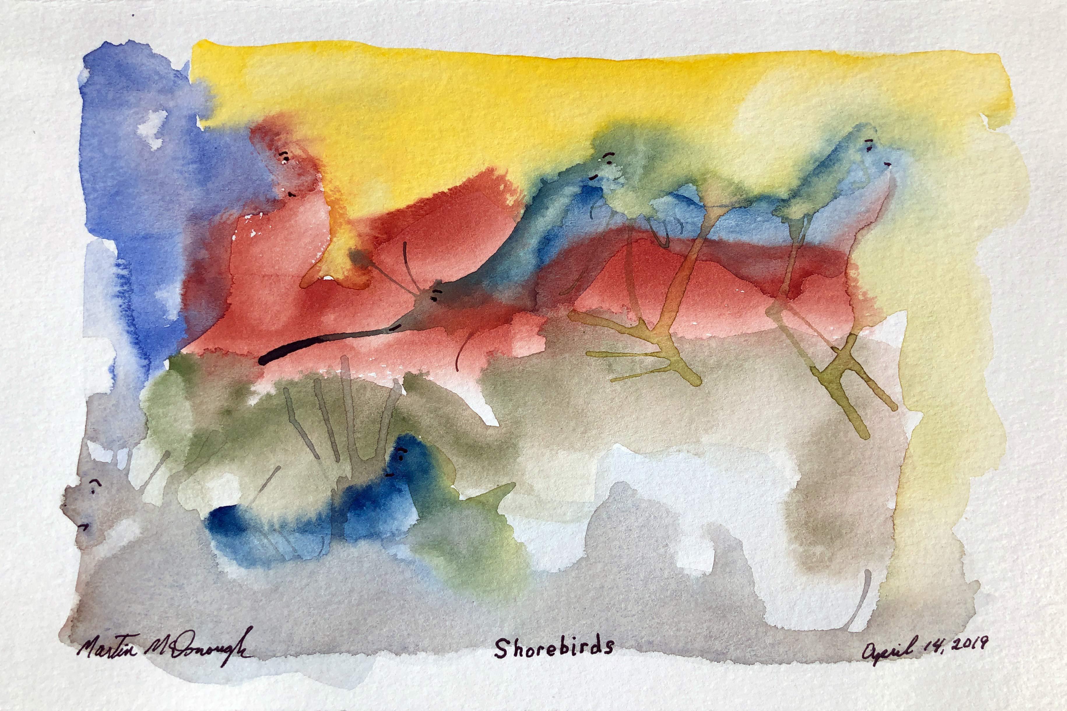 shorebirds-web